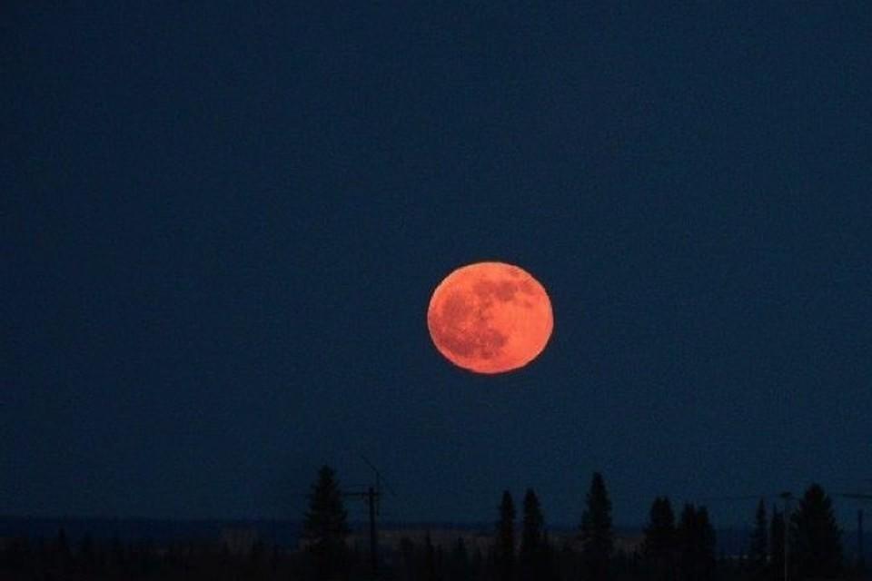 """Почти 4 часа на небе будет висеть """"кровавая"""" Луна."""