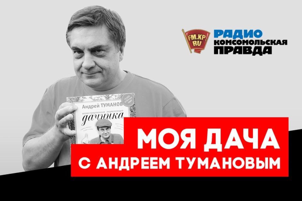 Андрей Туманов - с бесценными дачными советами