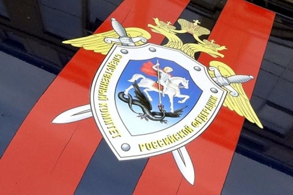 Уголовное дело расследовали сотрудники СК Фото: СУ СК РФ по Тверской области