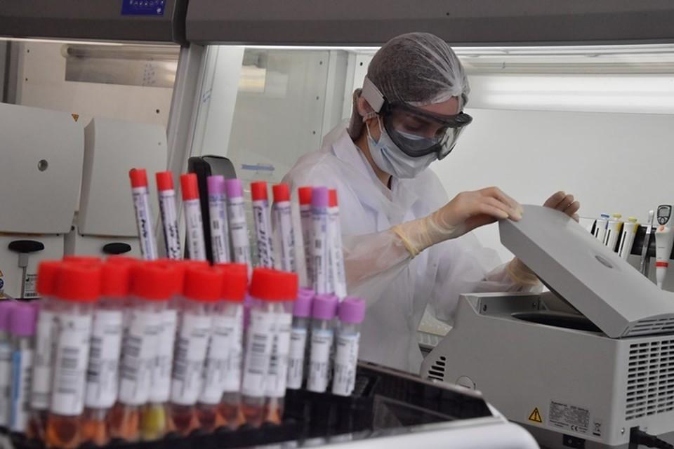 Более 8,7 тысяч тестов на коронавирус проведено в Кузбассе
