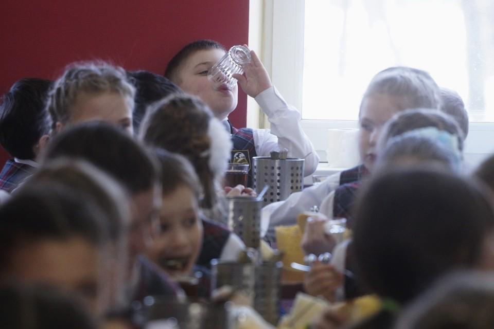 СК расследует массовое отравление детей в школе небольшого села Арани