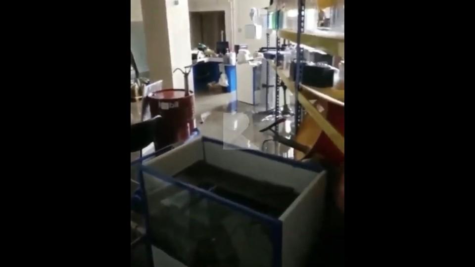 Затопленный магазин «Драйвер» в Рязани показали изнутри. Кадр видео из группы RZN LIFE.