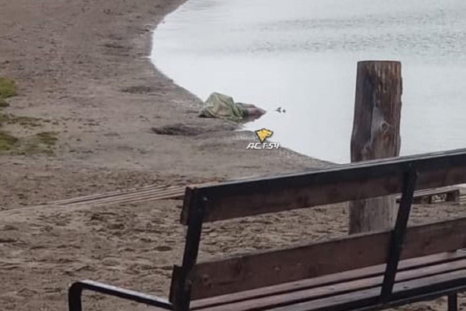 В Новосибирске на берегу котлована нашли мертвого человека. Фото: АСТ-54.