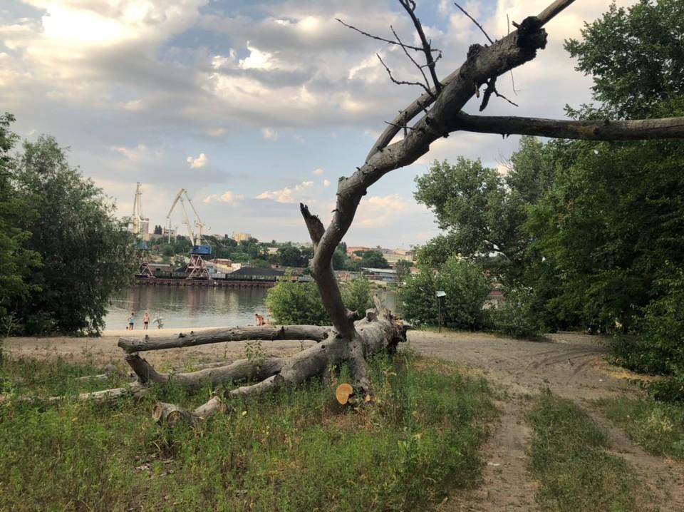 Зеленый остров в Ростове - это не только пляжный отдых и шашлыки. Это еще и страшные истории очевидцев. Фото: КИСЛОВА Виктория