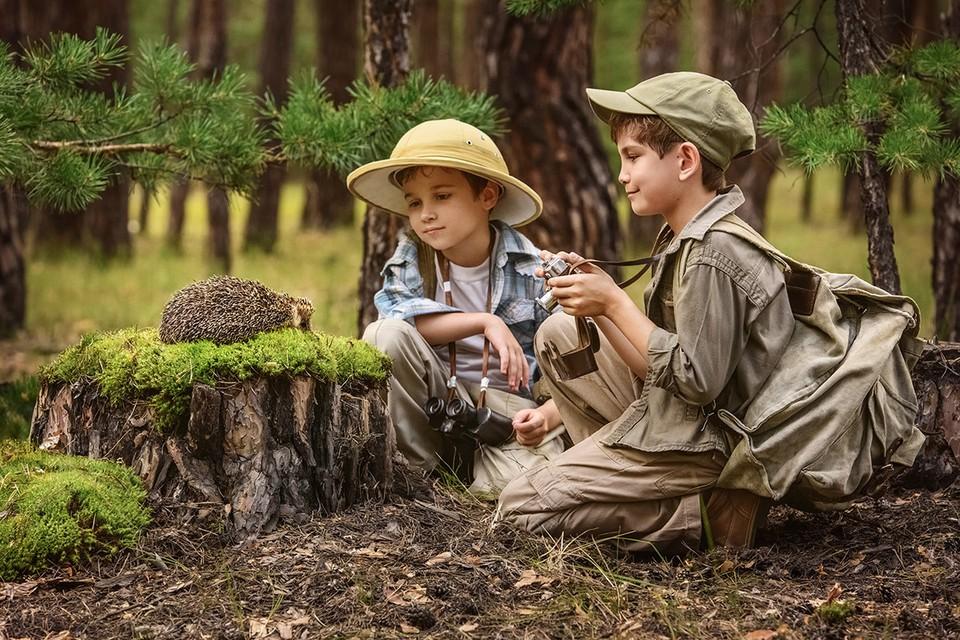 У подростков, которые жили вблизи леса и каждый день хотя бы полчаса бывали среди деревьев, в среднем на 16% выше оказались показатели интеллектуальных способностей и стрессоустойчивость.