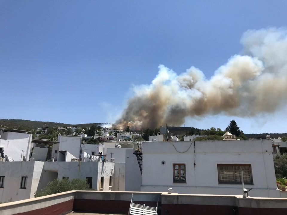 Пожар в турецком Бодруме взяли под контроль