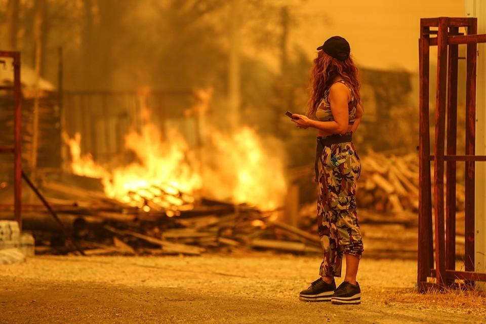 Террористическая организация «Дети огня» призналась в организацию поджогов лесов в Турции