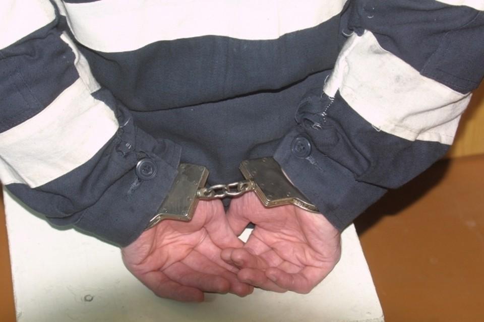 Против нарушителя возбудили несколько административных и уголовных дел