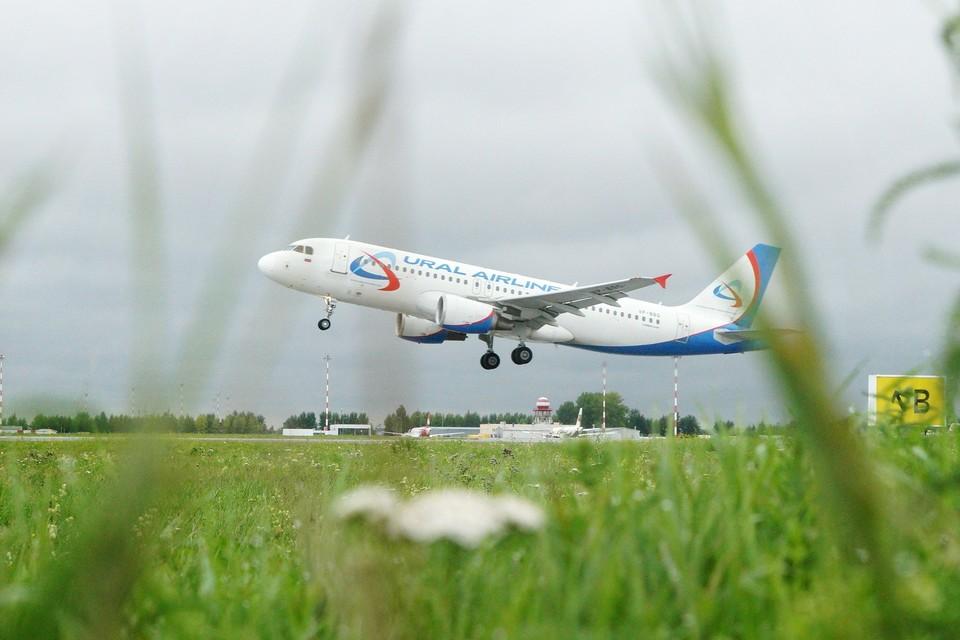 Для въезда в Таджикистан пассажирам, вылетающим из России, сейчас не нужно предъявлять отрицательные результаты ПЦР-тестов