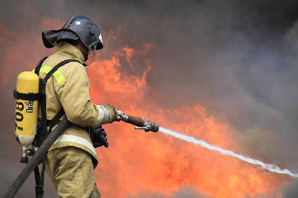 В тушении пожара участвовали 11 человек личного состава. Фото: МЧС ДНР