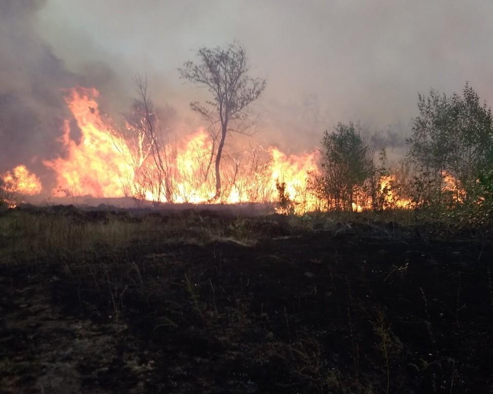 Огонь тушили больше 8о человек. Фото: ГУ МЧС по Челябинской области