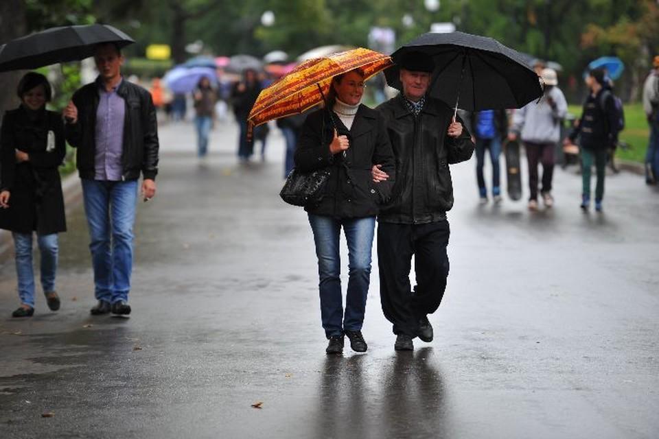 Тепло близко: какая погода в Ярославле будет на следующей неделе