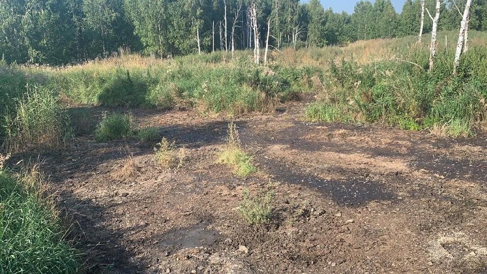 Куриный помет вывозили в поле. Фото: прокуратура Челябинской области