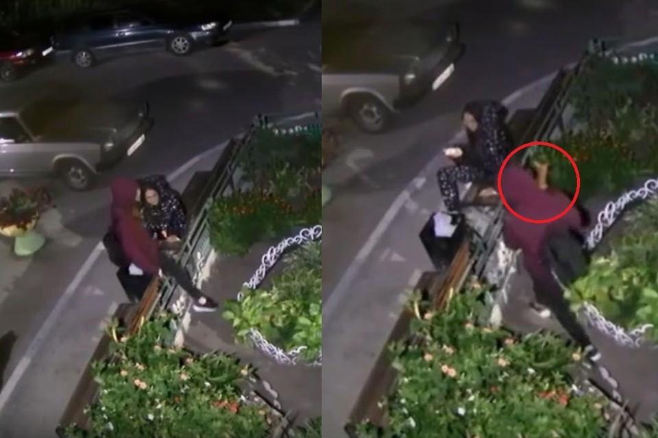 Во двор дома на улице Танкистов 21\2 в Новосибирске снова наведались воришки. Фото: Кадр из видео