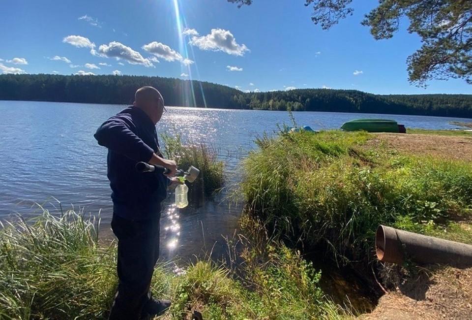 сотрудники Центра экологического мониторинга и контроля взяли пробы воды из озера. Фото: департамент информационной политики Свердловской области