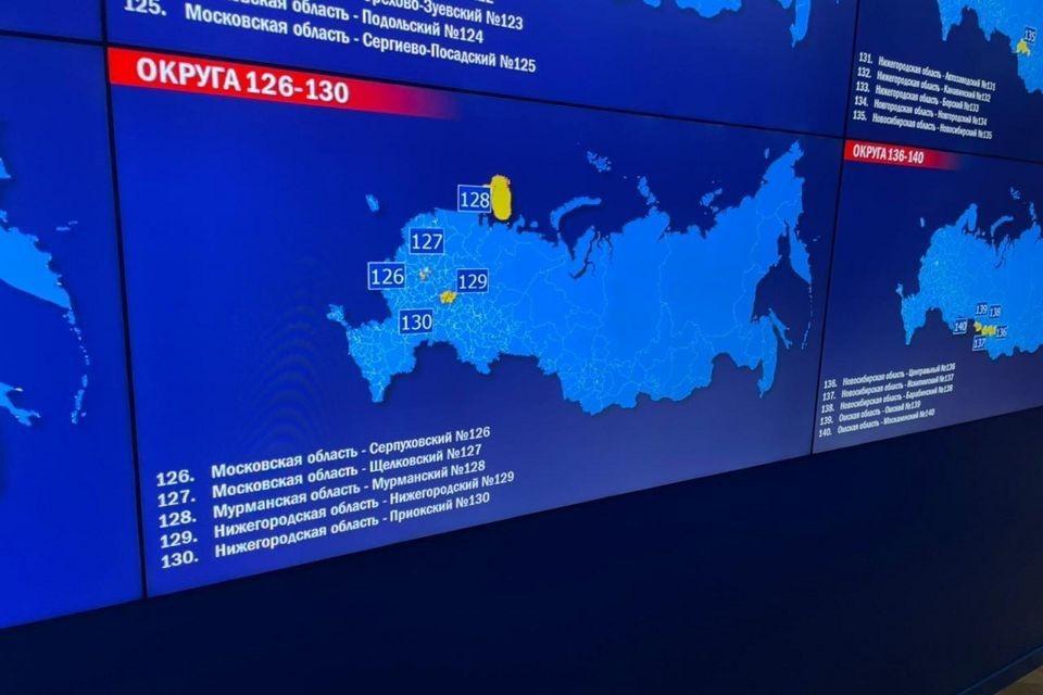 Всего проголосовать дистанционно решили 1,8 миллионов россиян. Фото: Александра Михова