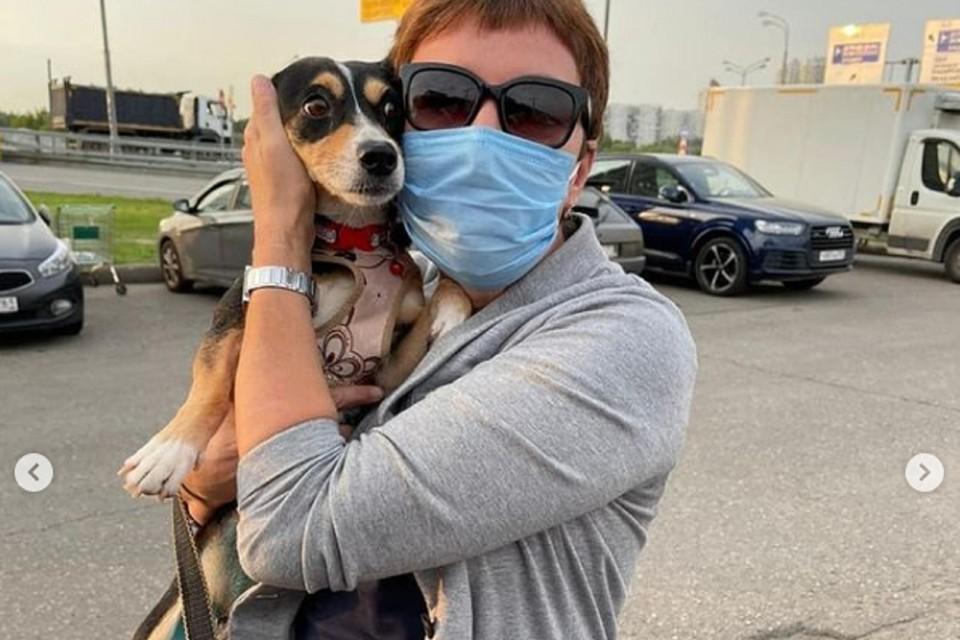 Ростовская бездомная собака стала жительницей Мурманска. Фото: аккаунт ЦБЖ в соцсети Инстаграм