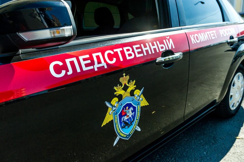 Следственный комитет возбудил уголовное дело на петербуржца, заманившего домой 10-летнюю девочку из Гатчины
