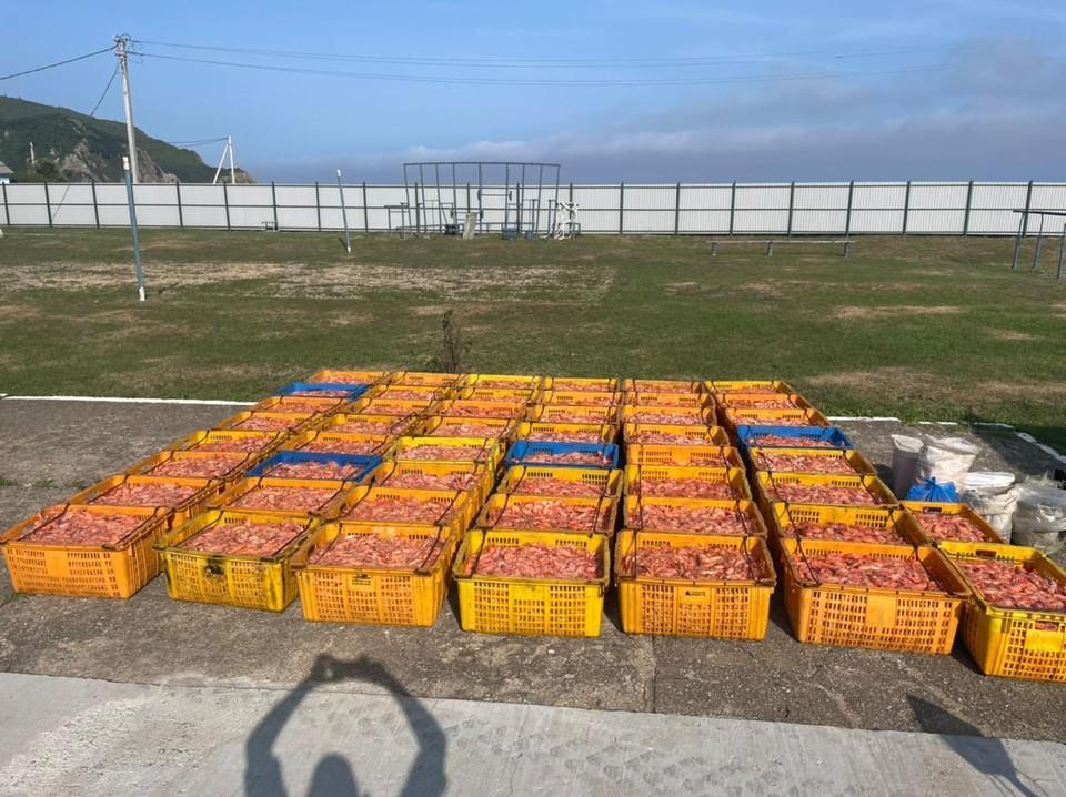 Фото: Пограничное управление ФСБ России по Приморскому краю