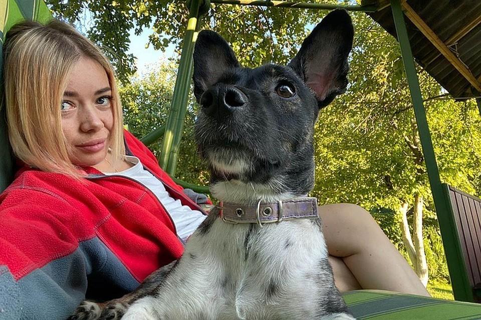 Сбежавшего питомца до сих пор ищут / Фото: из личного архива хозяйки собаки