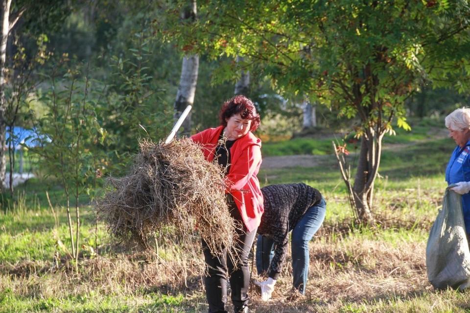 В течение нескольких часов добровольцы собрали десятки мешков различного мусора, сухой травы и поломанных веток