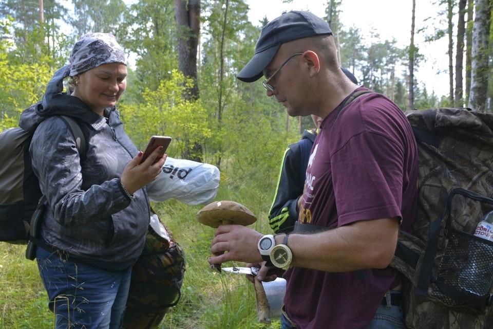 Заряженный телефон, нож, вода и компас - ваши обязательные спутники в лесу. Фото: Наталья Сарханянц