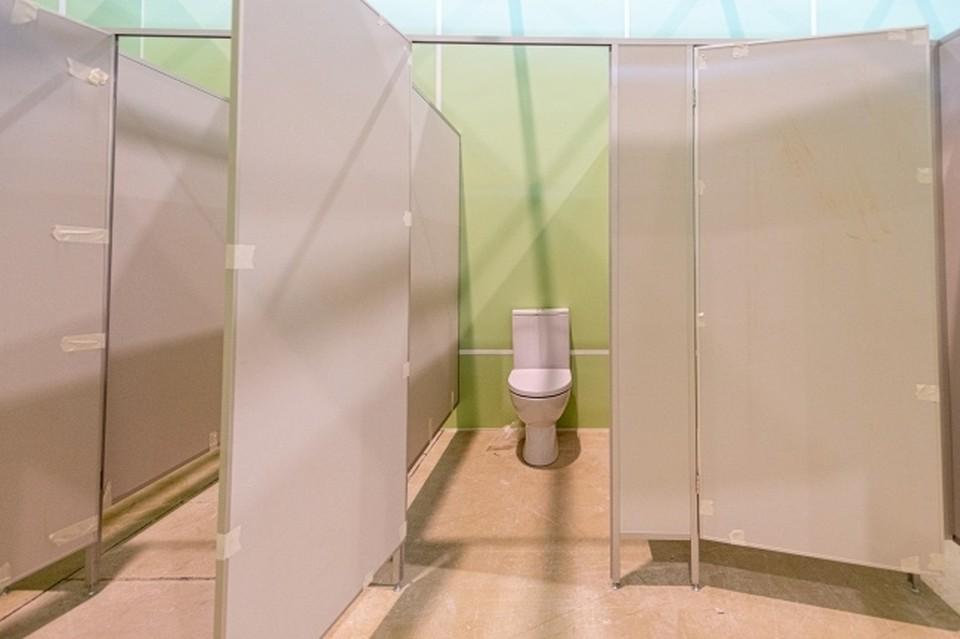 В Новосибирске директор школы заперла в туалете 9-классников, заподозрив их в курении.