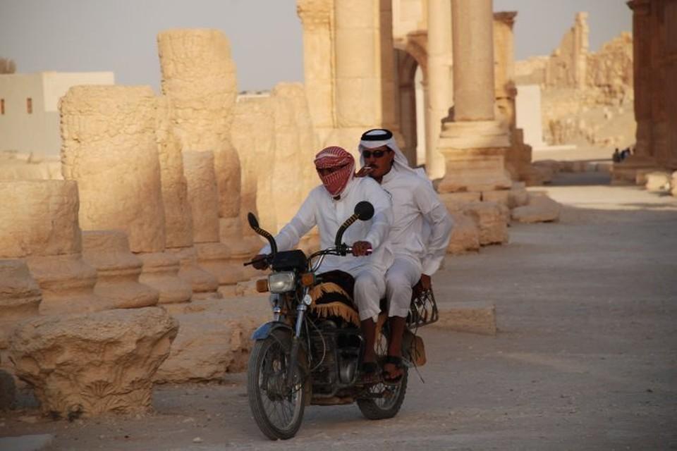 Город Пальмира перешел под контроль боевиков в середине мая